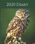 2020 Diary: Wildlife Weekly Planner & Monthly Calendar - Desk Diary, Journal, Owls, Little Owl, England, English Wildlife, Birds,