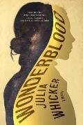 Wonderblood A Novel
