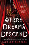 Where Dreams Descend A Novel