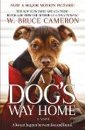 Dogs Way Home Movie Tie In