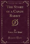 The Story of a Candy Rabbit (Classic Reprint)