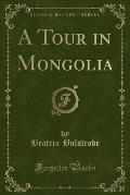 A Tour in Mongolia (Classic Reprint)