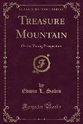 Treasure Mountain: Or the Young Prospectors (Classic Reprint)