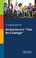 A Study Guide for Anonymous's Tain Bo Cuailnge