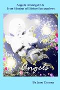Angels Amongst Us - True stories of Divine Encounters