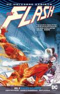 Flash Volume 3 Rogues Reloaded Rebirth