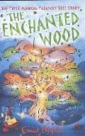 Enchanted Wood the First Magical Faraway Tree Story