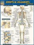 Joints & Ligaments Advanced Laminated Reference