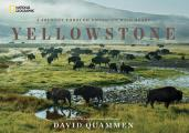 Yellowstone A Journey Through Americas Wild Heart