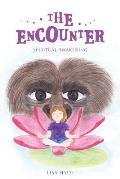 The Encounter: Spiritual Awakening