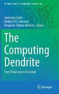 The Computing Dendrite: From Structure to Function