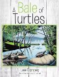 Bale of Turtles