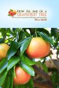 From the Limb of a Grapefruit Tree: A Woman's True-Life Adventure of Self-Reliance and Determination