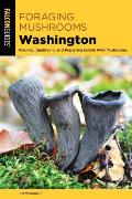 Foraging Mushrooms Washington Finding Identifying & Preparing Edible Wild Mushrooms