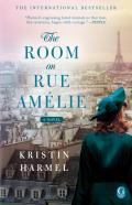 Room on Rue Amelie