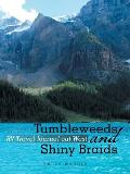 Tumbleweeds and Shiny Braids: RV Travel Journal Out West