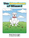 The Adventures of Blizzard
