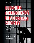 Juvenile Delinquency in American Society: Race, Class, and Politics