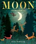 Moon A Peek Through Picture Book