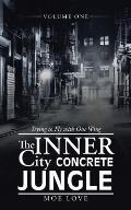 The Inner City Concrete Jungle: Trying to Fly with One Wing