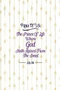 The Prince of Life, Whom God Hath Raised from the Dead: Names of Jesus Bible Verse Quote Cover Composition Notebook Portable