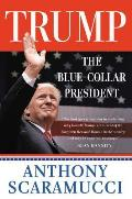 Trump the Blue Collar President