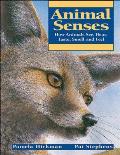 Animal Senses How Animals See Hear Taste Smell & Feel