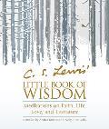 C S Lewis Little Book of Wisdom Meditations on Faith Life Love & Literature