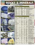 Rocks & Minerals Laminated Reference