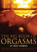 Big Book of Orgasms: 69 Sexy Stories