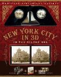 New York in 3D A Book Plus Stereoscopic Viewer & 50 3D Photos from the Turn of the Century