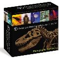 American Museum of Natural History Card Deck 100 Treasures from the Hall of Science & World Culture