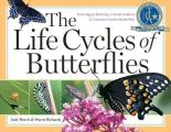 Life Cycles of Butterflies From Egg to Maturity a Visual Guide to 23 Common Garden Butterflies
