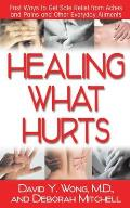 Healing What Hurts Fast Ways to Get Safe Relief from Aches & Pains & Other Everyday Ailments