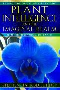 Plant Intelligence & the Imaginal Realm Beyond the Doors of Perception Into the Dreaming of Earth