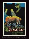 The Black Cat (Hardback)