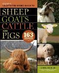 Storeys Illustrated Breed Guide to Sheep Goats Cattle & Pigs 163 Breeds from Common to Rare