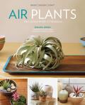 Air Plants The Curious World of Tillandsias