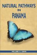 Natural Pathways in Panama