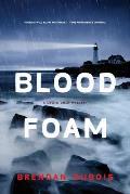 Blood Foam A Lewis Cole Mystery