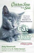 Chicken Soup for the Soul The Cat Really Did That 101 Stories of Miracles Mischief & Magical Moments