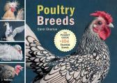 Poultry Breeds Chickens Ducks Geese Turkeys The Pocket Guide to 104 Essential Breeds