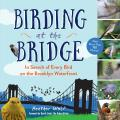 Birding at the Bridge A New Yorker Discovers More Than 100 Birds in Brooklyn Bridge Park