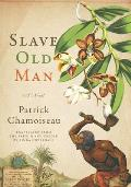 Slave Old Man A Novel