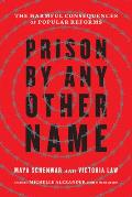 Prison by Any Other Name The Harmful Consequences of Popular Reforms