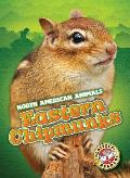 Eastern Chipmunks