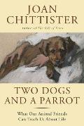 Two Dogs & a Parrot What Animals Can Teach Us about Life