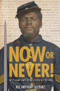 Now or Never Fifty Fourth Massachusetts Infantrys War to End Slavery