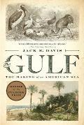 Gulf The Making of An American Sea