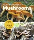 Beginners Guide to Mushrooms Everything You Need to Know from Foraging to Cultivating